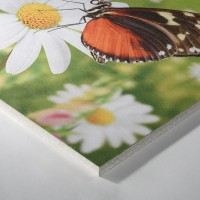 Плита потолочная Thermatex Varioline Motif Schmetterling